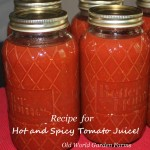 An easy way to make some hot and spicy tomato juice to can!