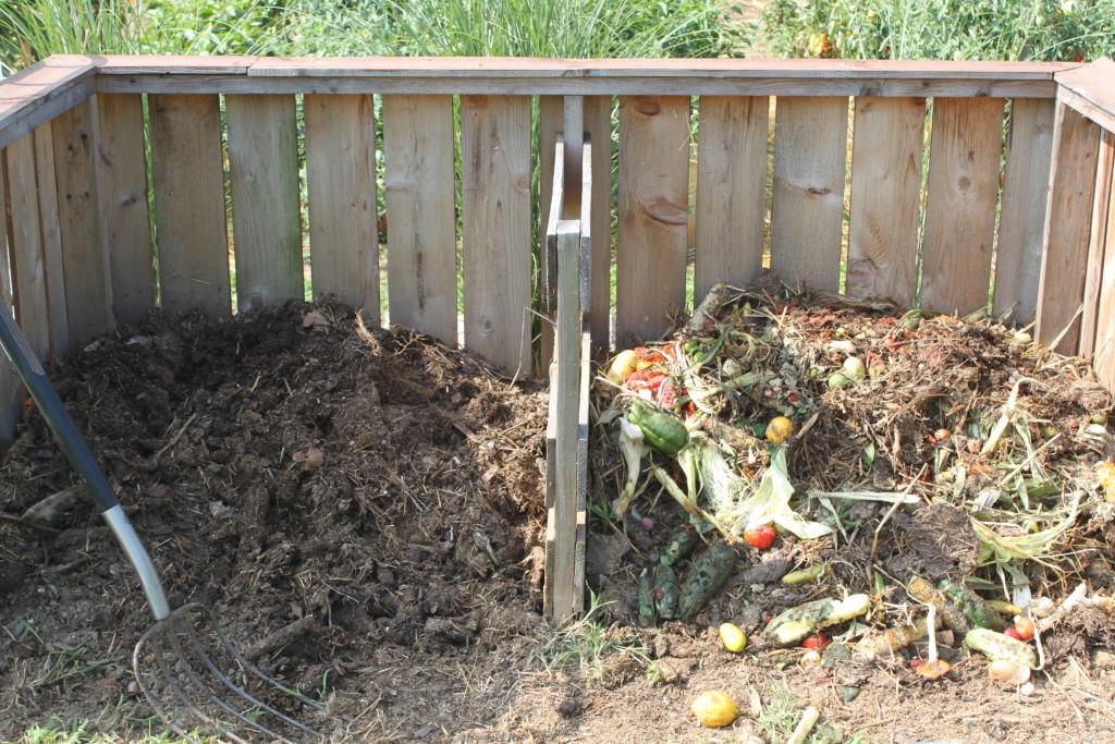 4 fall garden chores