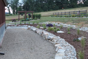 We used a combination of rock and pine bark much here to add contrast to the back wall landscape