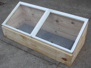 using a cold frame