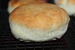 Homemade Biscuit Recipe