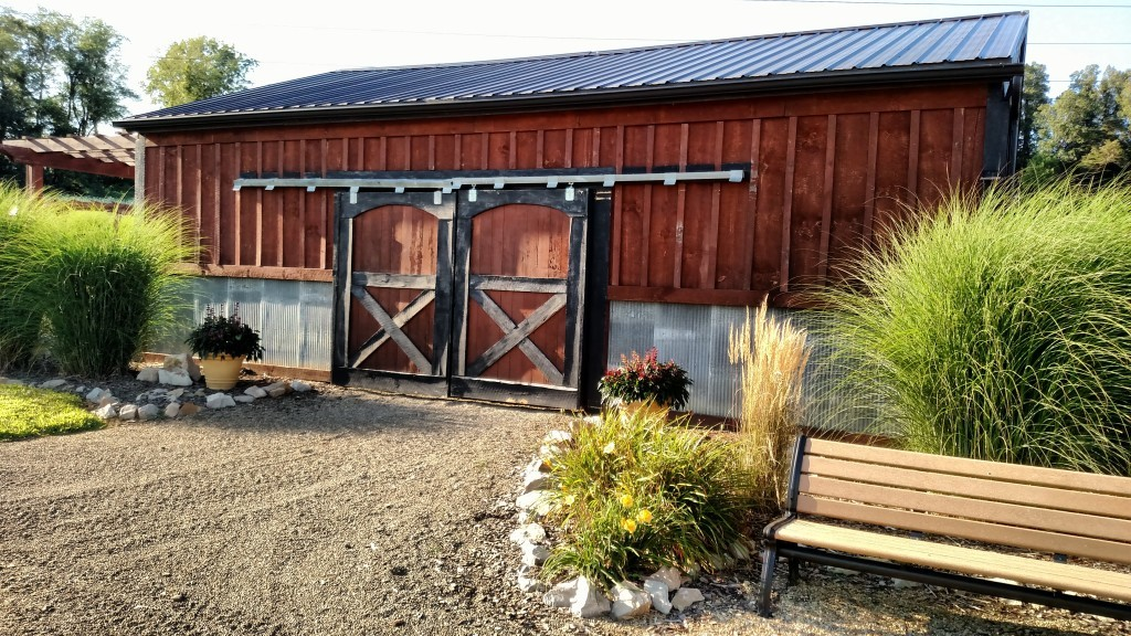 The front entrance to the farm. I love the of contrast of color between the blood grass, fountain grass and black eyed susan