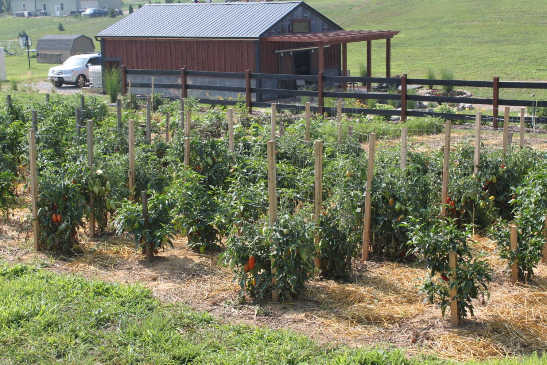 Filling Tall Raised Garden Beds
