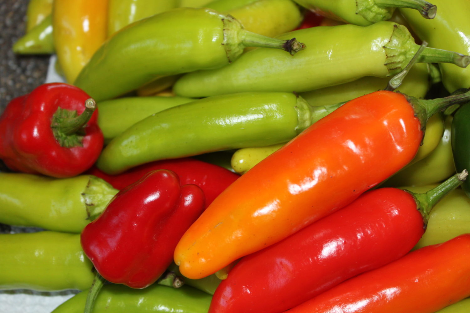 Growing An Organic Garden – Healthy For You And Your Wallet!