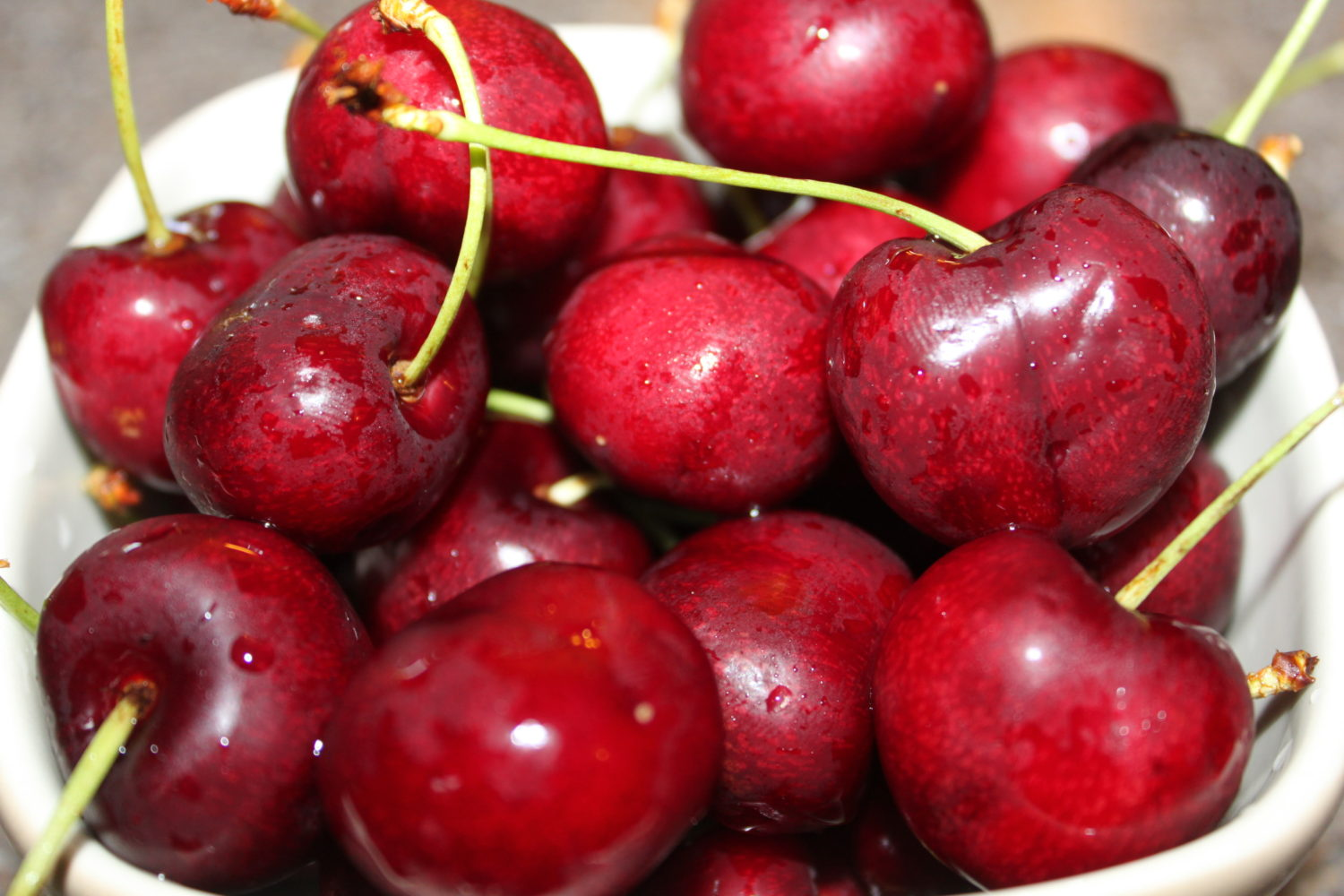 How And Why To Plant Fruit Trees In The Fall