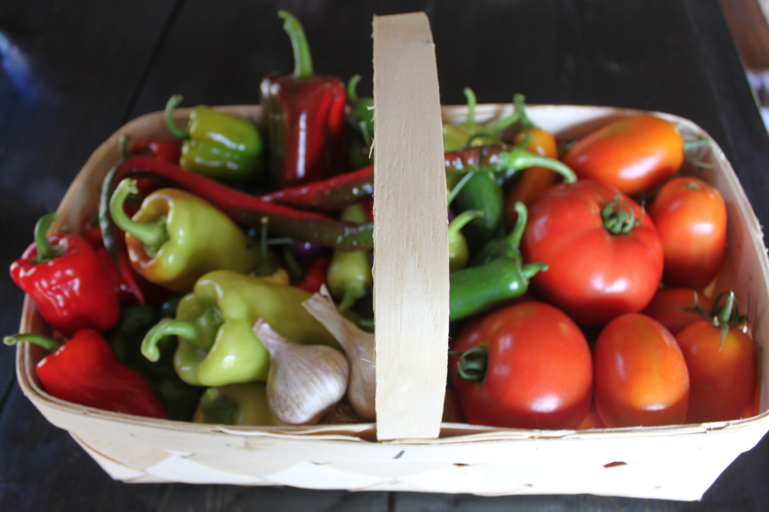 5 Great Reasons To Grow Your Own Food And Plant A Garden!