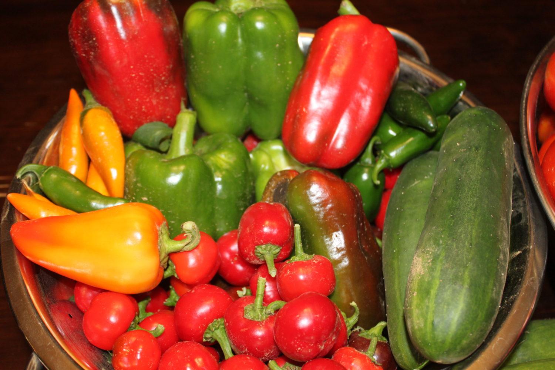 How To Stop Weeds In Your Vegetable Garden!