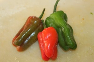 Add in extra hot peppers -such as our cajun belle peppers from our summer garden.