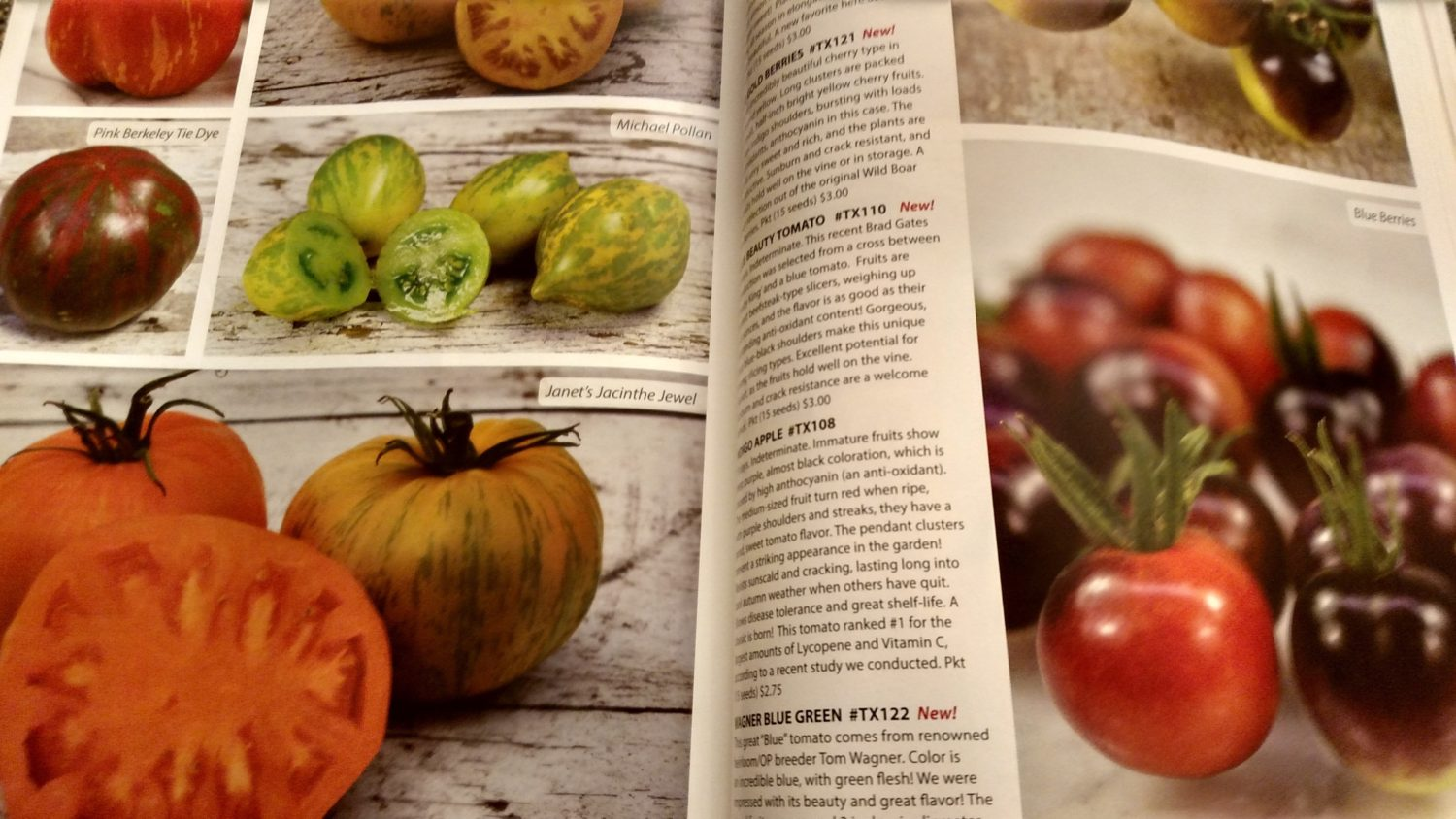 The Best Garden Seed Catalogs For Winter Reading!
