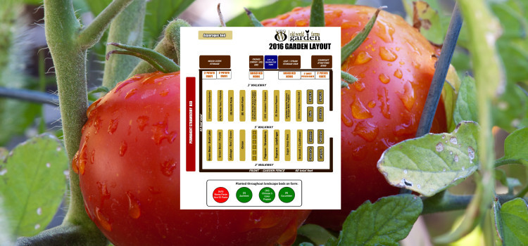 2016 Garden Plan – Preparing To Grow The Food We Eat!