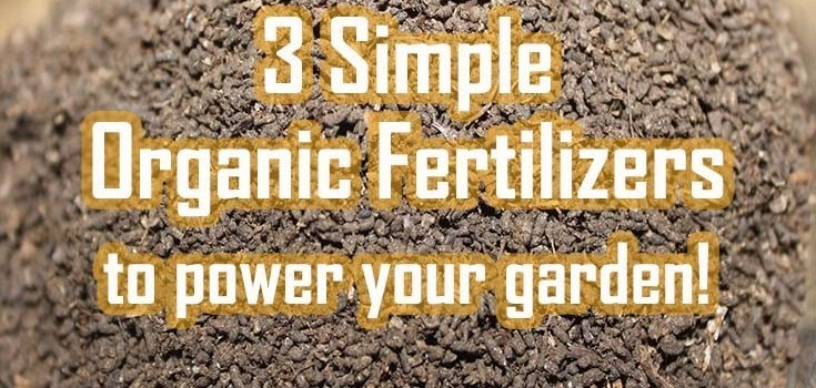 organic fertilizers