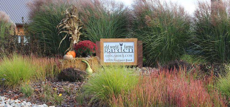autumn farm photos