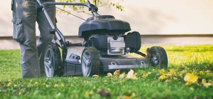 5 Must-Do Fall Chores For Your Outdoors! Preparing For Winter