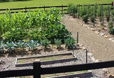 weed free garden secrets