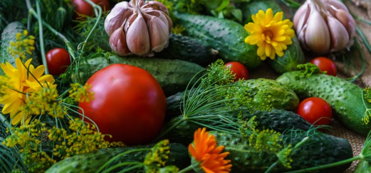 Companion Planting Basics – Growing Vegetables Together In The Garden!