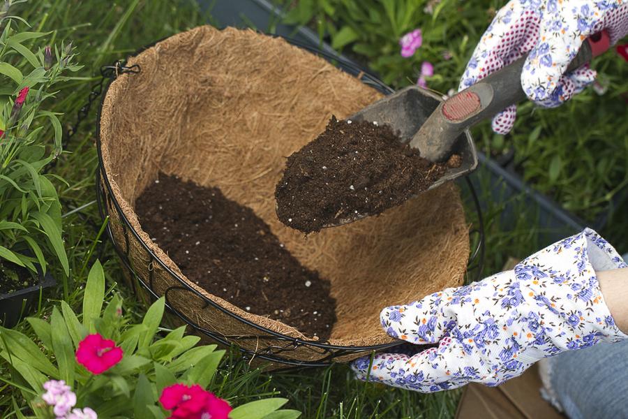 perfect potting soil