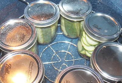 crispy dill pickle recipe