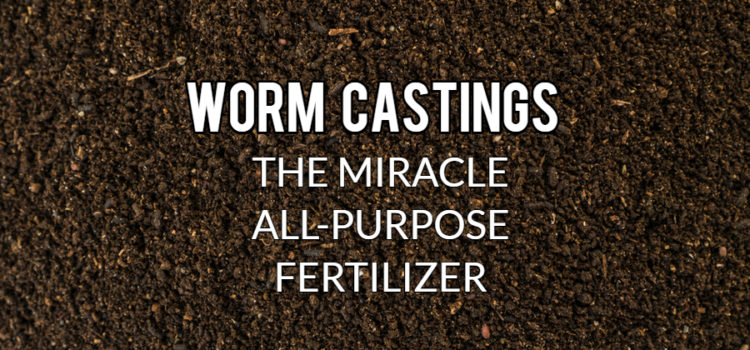 use worm castings