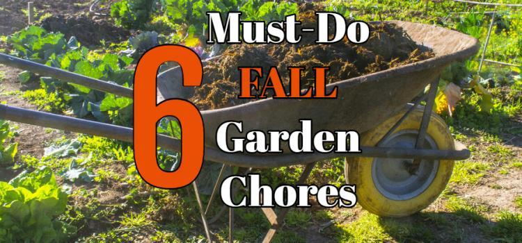 fall vegetable garden chores