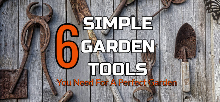 6 Simple Garden Tools – The Only Tools Needed For An Amazing Garden!