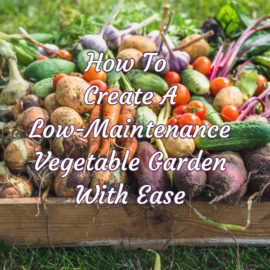 How To Create A Simple, Weed-Free, Low-Maintenance Vegetable Garden