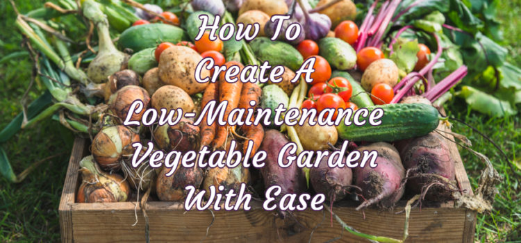 low-maintenance vegetable garden