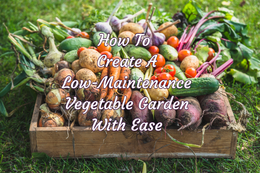 How To Create A Simple Weed Free And Easy Care Vegetable Garden