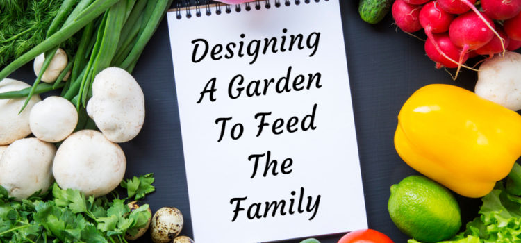 vegetable garden plan