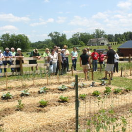 Free Raised Row Garden Classes – Join Us For A Great Day At The Farm!