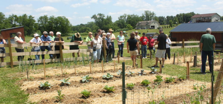 raised row garden classes