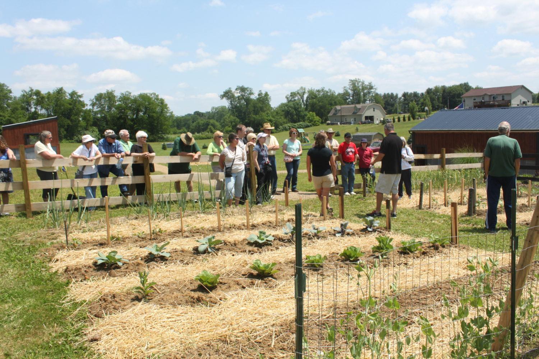 raised row garden classes