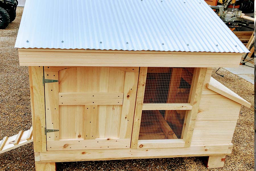 small flock chicken coop