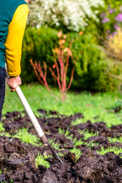 preparing garden beds for planting