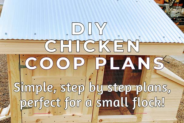 small flock chicken coop plans
