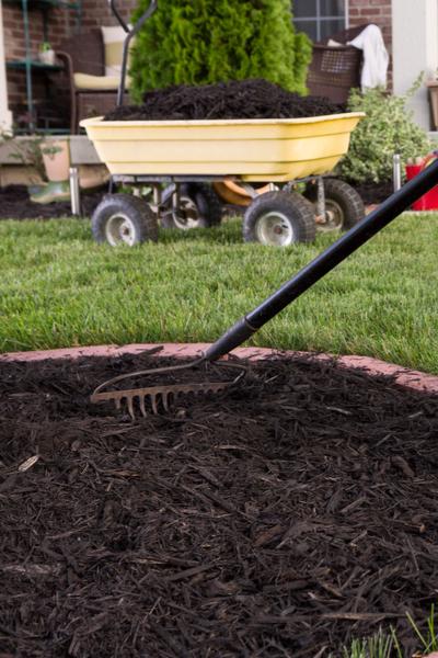 keeping flowerbeds weed free