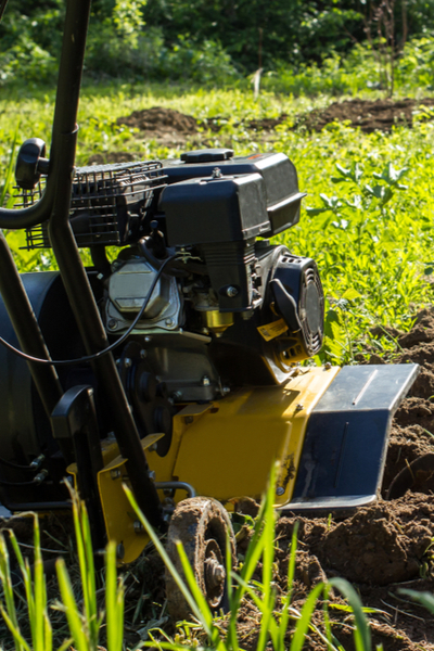 stop garden weeds by not rototilling