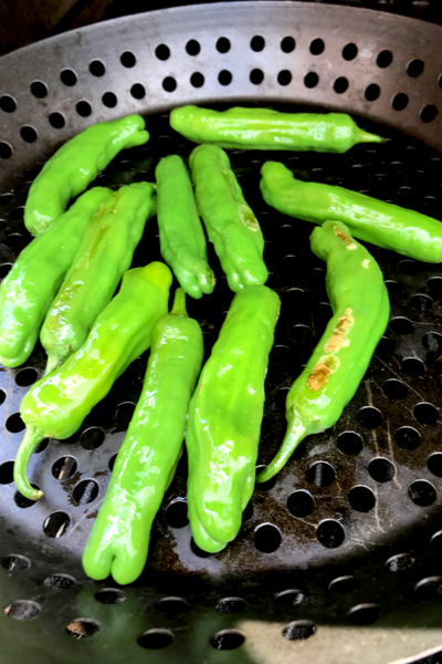 shishito peppers are once again a part of the garden plan.