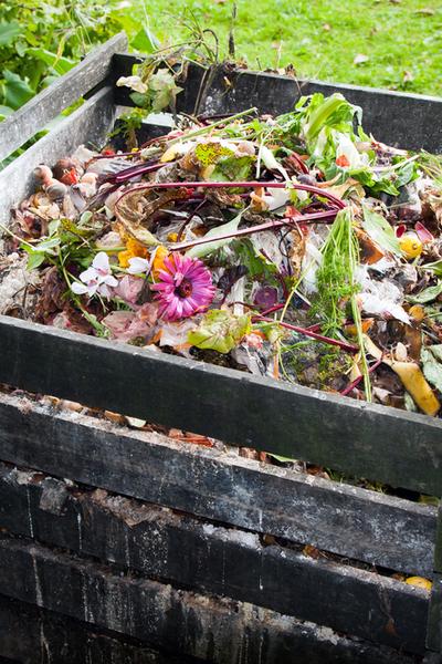 summer garden chores - composting