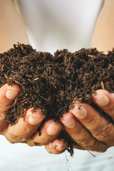 great garden soil