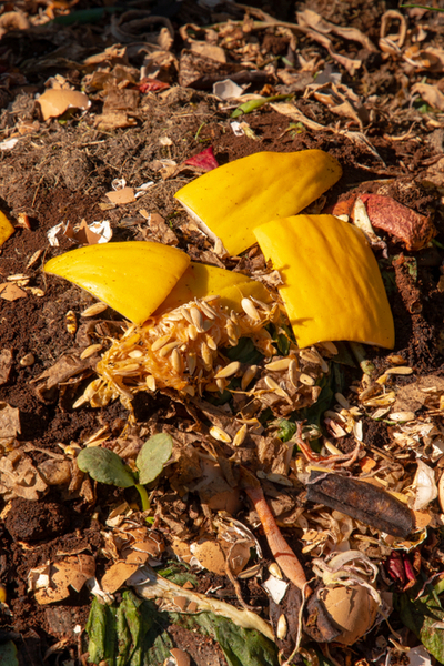 compost pile from fall decorations