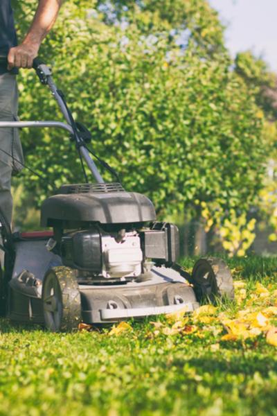 fall lawn chores
