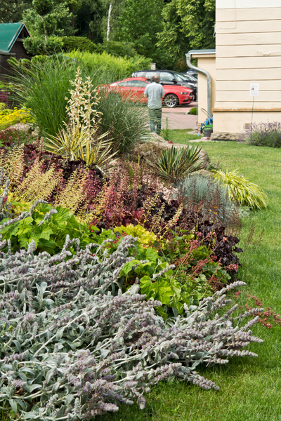 preparing flowerbeds for winter