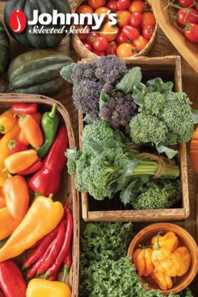 best free garden seed catalogs