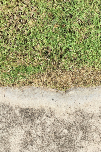 damage to lawns