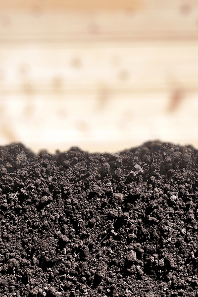 pulvarized dirt