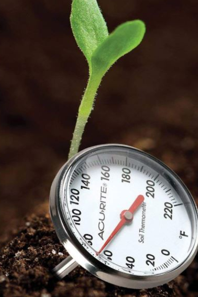 garden gadgets - soil thermometer