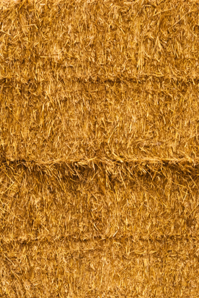 no need to condition straw bales