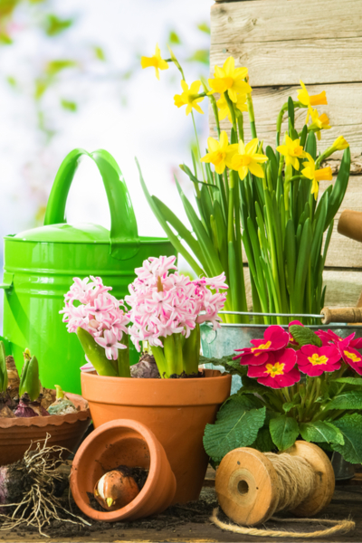 organic gardening made simple