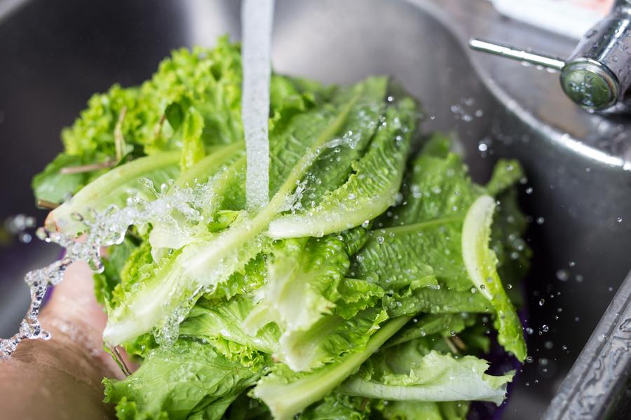 storing fresh produce lettuce