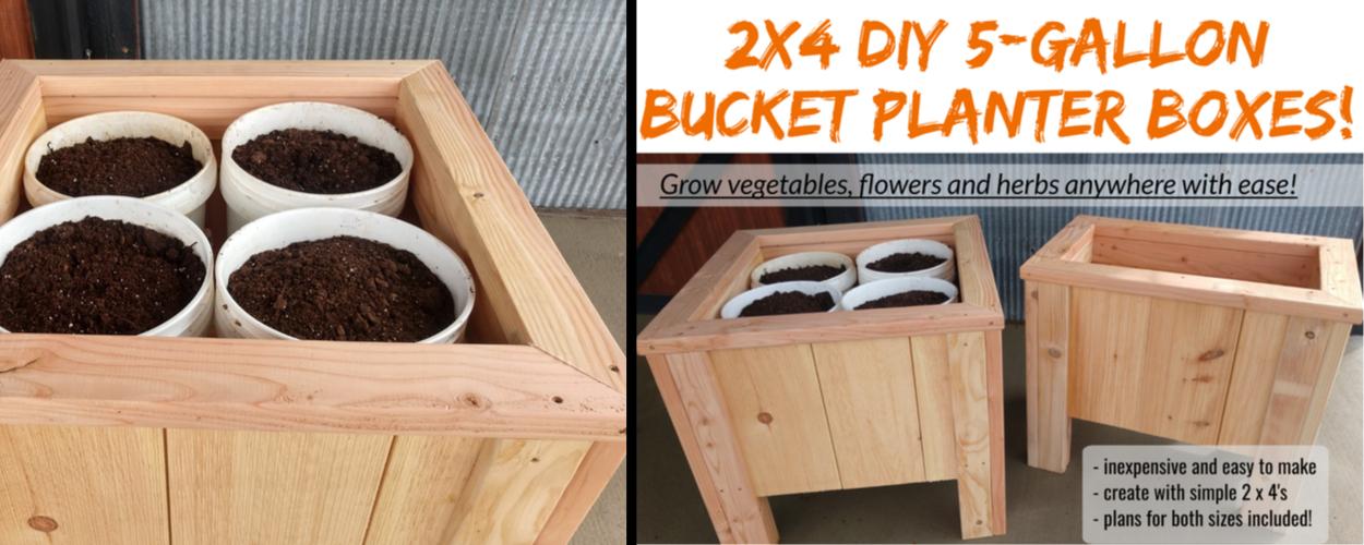 2 x 4 planter boxes